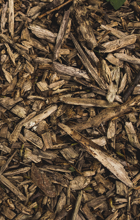 For All Seasons Tree Service in Loganville, GA: Our Wood Chip and Mulch Delivery Services
